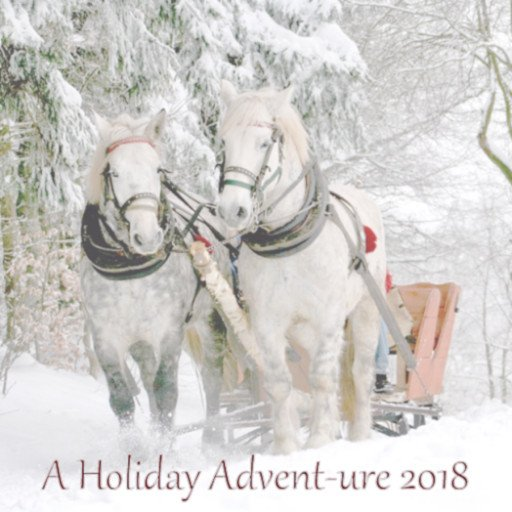 A Holiday Advent-ure 2018