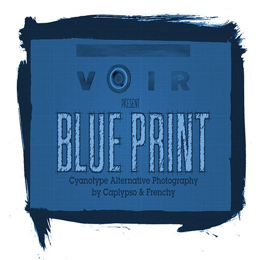 Voir Cyanotype February 2019