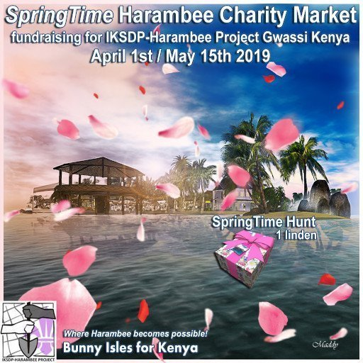 Spring Time Harambee Charity Market – April / May 2019